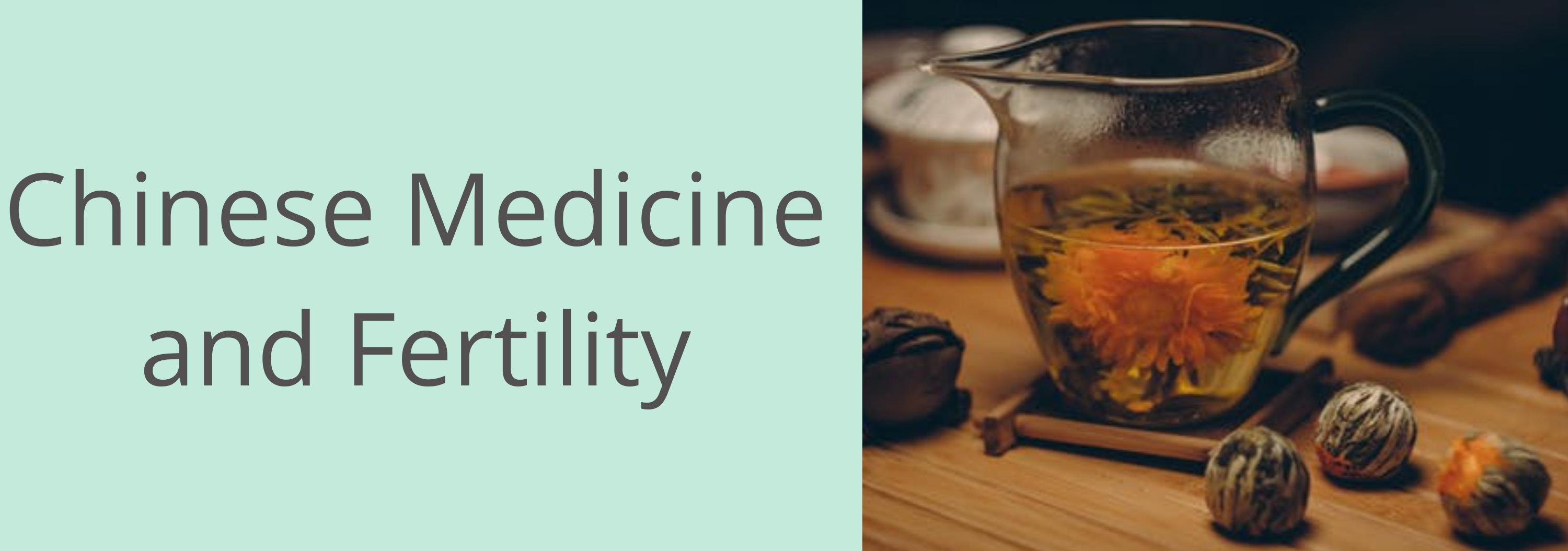chinese medicine for fertily